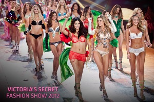 vsfs-2012-horizantal-Cover1